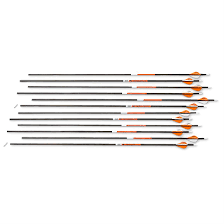 Victory Trophy Hunter 350 Arrows 12 Pack 222655 Arrows