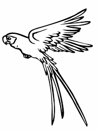 Small Picture Parrot is Flying Coloring Page coloring pages Pinterest