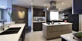Contemporary kitchen cabinet Maple Houzz Contemporary Kitchen Cabinets Concepts For Neat Interior Csmaucom