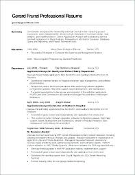 Example Of Resume Summary Interesting Example Summary Resume Resume Summary Template Resume Summary Sample