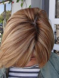 Strawberry Blonde Lowlights With Blonde Highlights