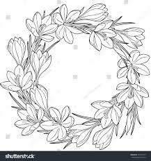 Spring Flower Wreath Crocuses Vector Isolated Stock Vector Royalty