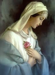 Resultado de imagem para maria imaculada