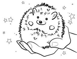 Small Picture Baby Hedgehog Smiling Colouring Pages Bulk Color