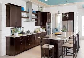 Kitchen  Kitchen Colors With Dark Brown Cabinets Window - Dark brown kitchen cabinets