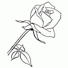Beste Kleurplaten Bloemen Rozen Kleurplaat 2019