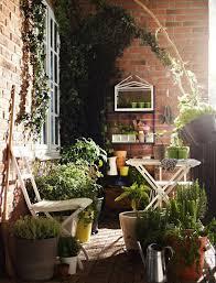 small balcony garden balcony plants