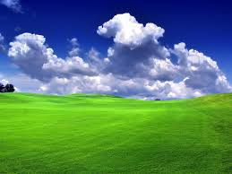green grass field animated. Green Grass Field. I Miss The Soft, In Illinois. Field Animated K