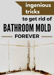 how to get rid of mold in bathroom. Ingenious Tricks To Get Rid Of Bathroom Mold Forever - CleaningInstructor.com How In O