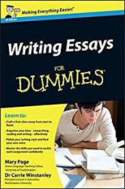 english grammar for dummies geraldine woods  writing essays for dummies