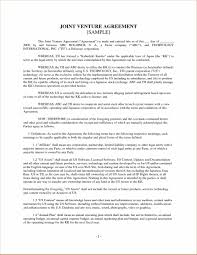 ... Chic International Business Resume Sample with Additional Template  Venture Legal Agreement Template Create Professional ...