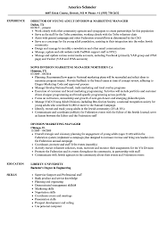 Resume Examples For Young Adults Division Marketing Manager Resume Samples Velvet Jobs 6