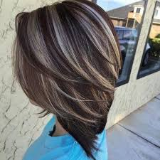 Image Result For Frosted Hair Highlights Pictures Shoulder Length