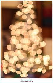 Photographing Christmas Tree Lights Photographing Christmas Lights Fresh Look Photography Most