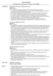 Budget Analyst Resume Sample Financial Budget Analyst Resume Samples Velvet Jobs 4