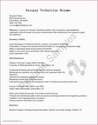 10 Nursing Career Goals And Objectives Examples Resume Letter