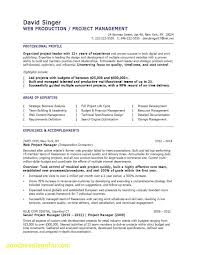 Project Manager Resume Unique Fresh Marketing Manager Resume