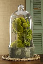 Decorating With Moss Balls 100 Cool Spring Moss Outdoor And Indoor Décor Ideas DigsDigs 71
