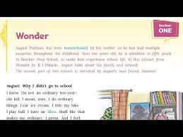 cl 7 english chapter 1 wonder
