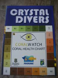 E4 Pay Chart 2011 Coral Watch Project Aware
