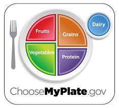 healthy food plate diagram. Simple Food JPG  Intended Healthy Food Plate Diagram P