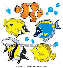coral reef fish drawing.  Fish Coral Fish Collection  Isolated Illustration On Reef Fish Drawing