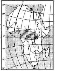 Контрольная работа по Географии Африка класс