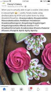 Pin by Priscilla Gregory on FLORAL COOKIES | Royal icing cookies, Cookie  decorating, Edible art