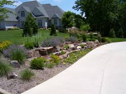 Image Of Driveway Landscaping Ideas Plants Front Yard Best