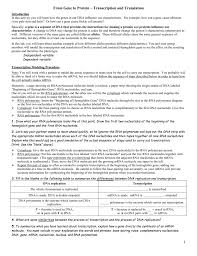 Transcription And Translation Practice Worksheet Answers   28 also Transcription and Translation Worksheet Answers   homework together with  as well EXTRA CR  transcription and translation worksheet as well Transcription and translation practice   YouTube moreover  in addition Protein synthesis further  moreover Transcription and Translation Worksheet furthermore TRANSCRIPTION and TRANSLATION WORKSHEET 1  WITH KEY further Transcription and translation practice worksheet 1    Teaching. on transcription and translation worksheet answers