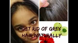 How To Get Rid Of Grey Hair Naturally Home Remedies For Premature