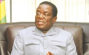 Image result for mnangagwa images