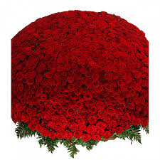 """<b>Композиция из 1001</b> розы """"Сенсация"""" купить букет за 245490 руб ..."""