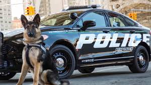 2018 ford interceptor sedan.  2018 2018 ford police responder hybrid sedan in ford interceptor sedan