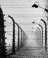 barbed wire fence holocaust. Interesting Holocaust In Barbed Wire Fence Holocaust L