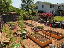 Small Picture Gorgeous Backyard Vegetable Garden Design 17 Best Ideas About