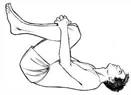 Image result for stretching for back pain