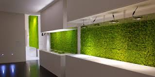 original kitchen with a vertical garden modern kitchen with a wall overed with grass