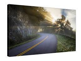 Artisan Light And Landscape Light Through The Tree Landscape 18x12 Gallery Pro Frame