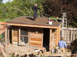 building a green roof en coop