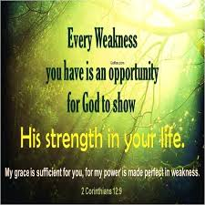 Very Inspiring Quotes About Life Delectable Bible Motivational Quotes Magnificent Very Inspirational Quotes
