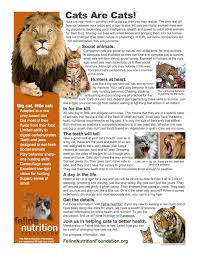 my favorite animal essay manners essay essay on etiquette and  my favorite animal essay cat my favorite animal essay cat