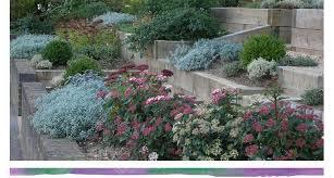 Small Picture Rebecca Webb Garden Designs