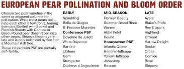 Moonglow Pear Pollination Chart European Pear Pollination Raintree Nursery