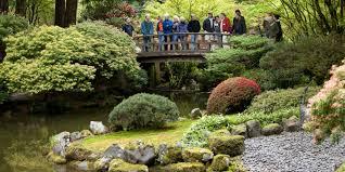 Japanese Garden Volunteer Portland Japanese Garden