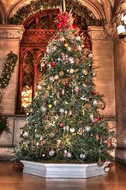 Biltmore Christmas Tree Photograph by Carol R Montoya