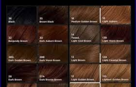Types Of Brown Hair Find Your Perfect Hair Style