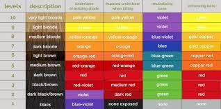 color level chart hair color levels 1 10 chart best hair color 2017