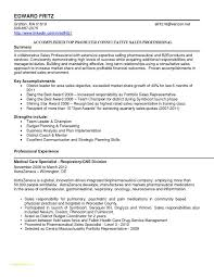 Aviation Resume Services Or Sales Resume Summary Examples Examples