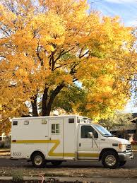 my adventure ambulance 1997 e350 horton mini mod expedition portal Ambulance Wiring Room found a tree that matched the stripe